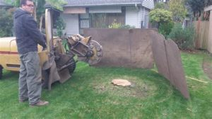 tree stump grinding Adelaide